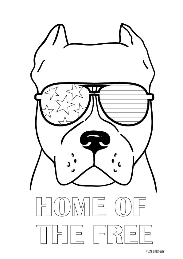 Pitbull 4th of July Coloring page